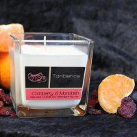 Cranberry & Mandarin — Square Jar Candle